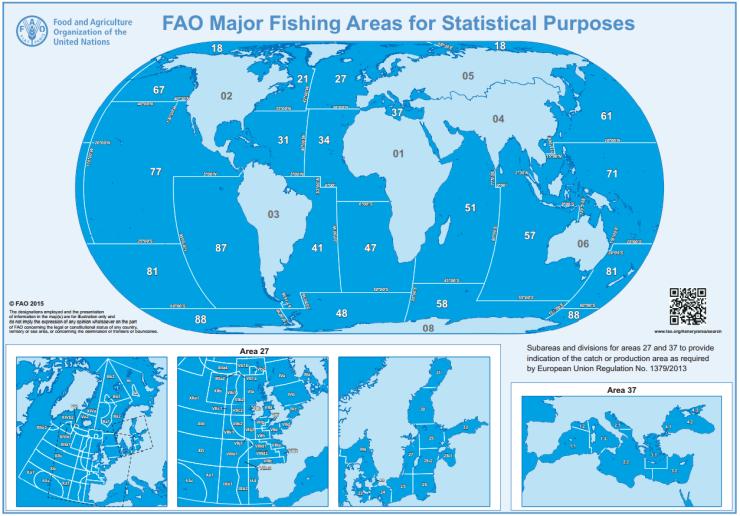 FAO zone di pesca
